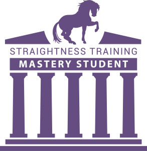 ST_Mastery_student