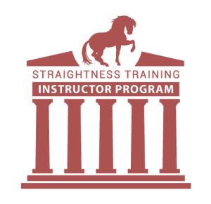ST_instructor_program-300x291