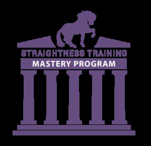 st_mastery_program